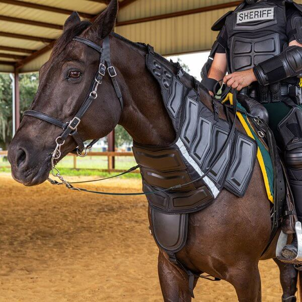 Riot Protection Collar for Horse